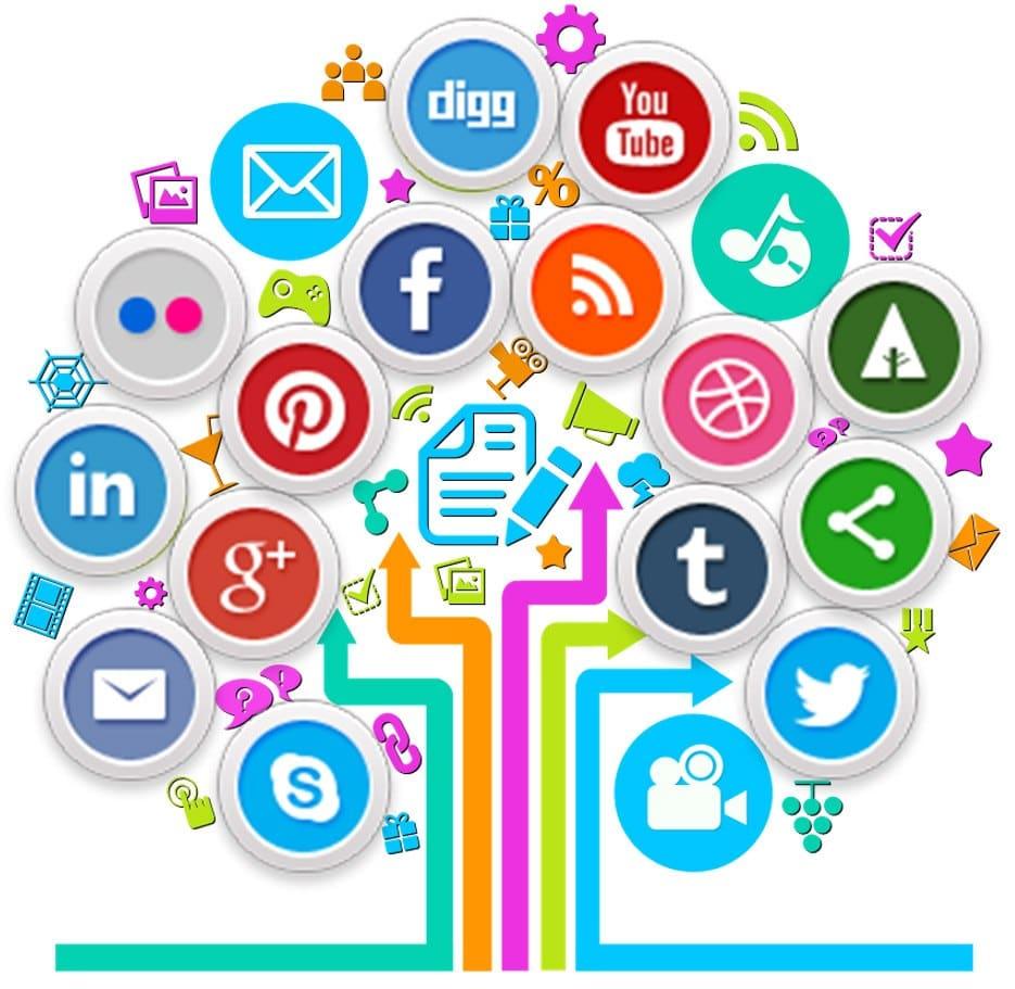 Social Media Profesional